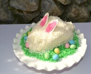 Easter Bunny Cake-on grass-www.lizbushong.com