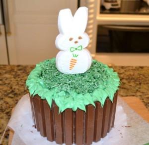 aster Kit Kat Basket-bunny peep-www.lizbushong.com