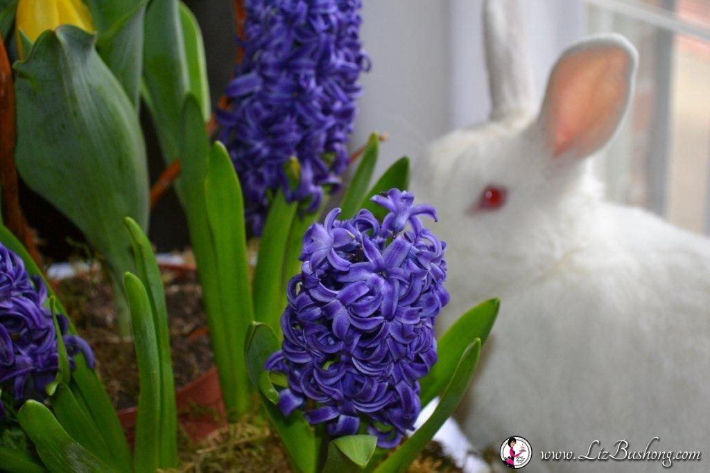 Springtime arrangement-JJ bunny- www.lizbushong.com