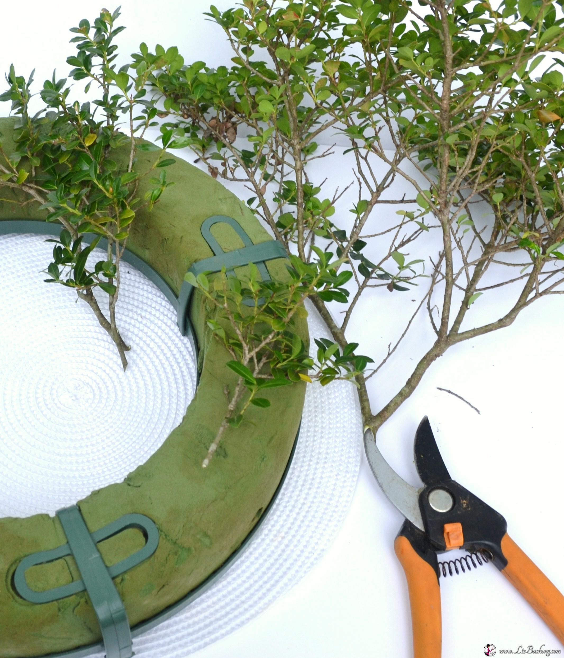 Boxwood Wreath Materials Verical Wwwzbushong