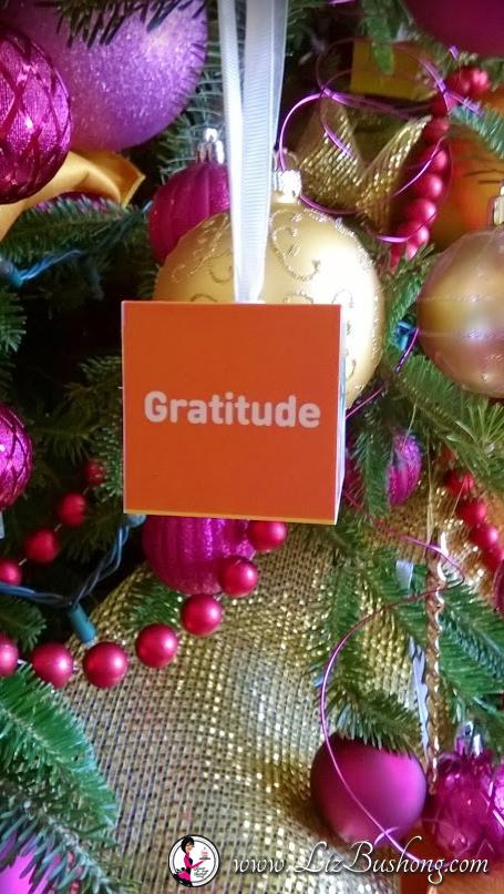 http://lizbushong.com/wp-content/uploads/2016/12/Vice-Presidents-Residence-gratitude-theme-lizbushong.com_.png