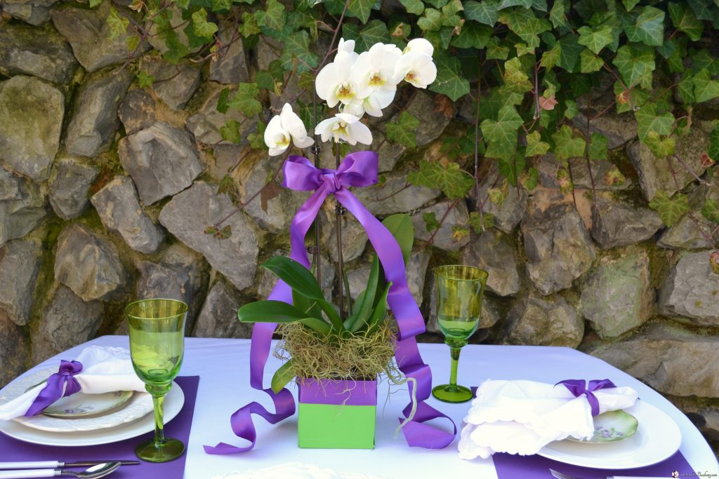 http://lizbushong.com/wp-content/uploads/2017/03/Wedding-Party-purple-green-lizbushongcom.jpg