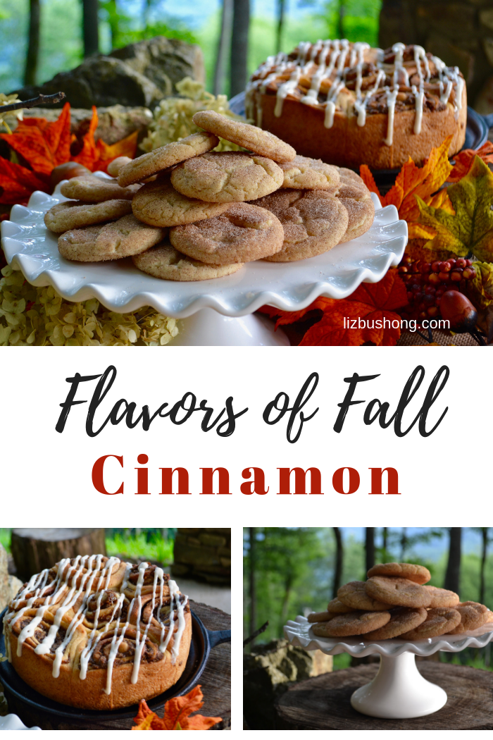Flavors of Fall Infographic lizbushong.com