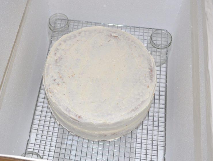 traveling insulated cake box