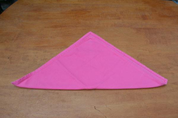 Rose Napkin Fold- Step 2-Lizbushong.com