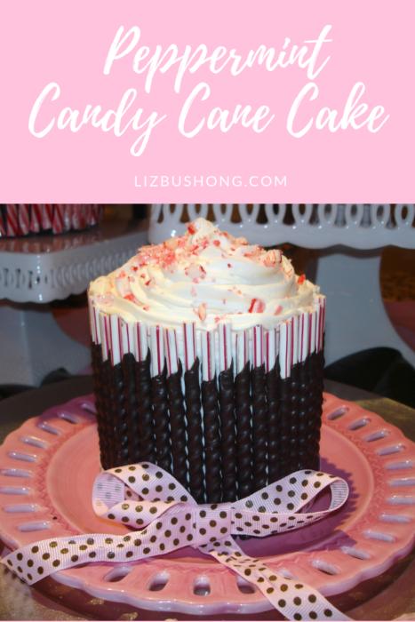 Chocolate Candy Cane Cake-lizbushong.com