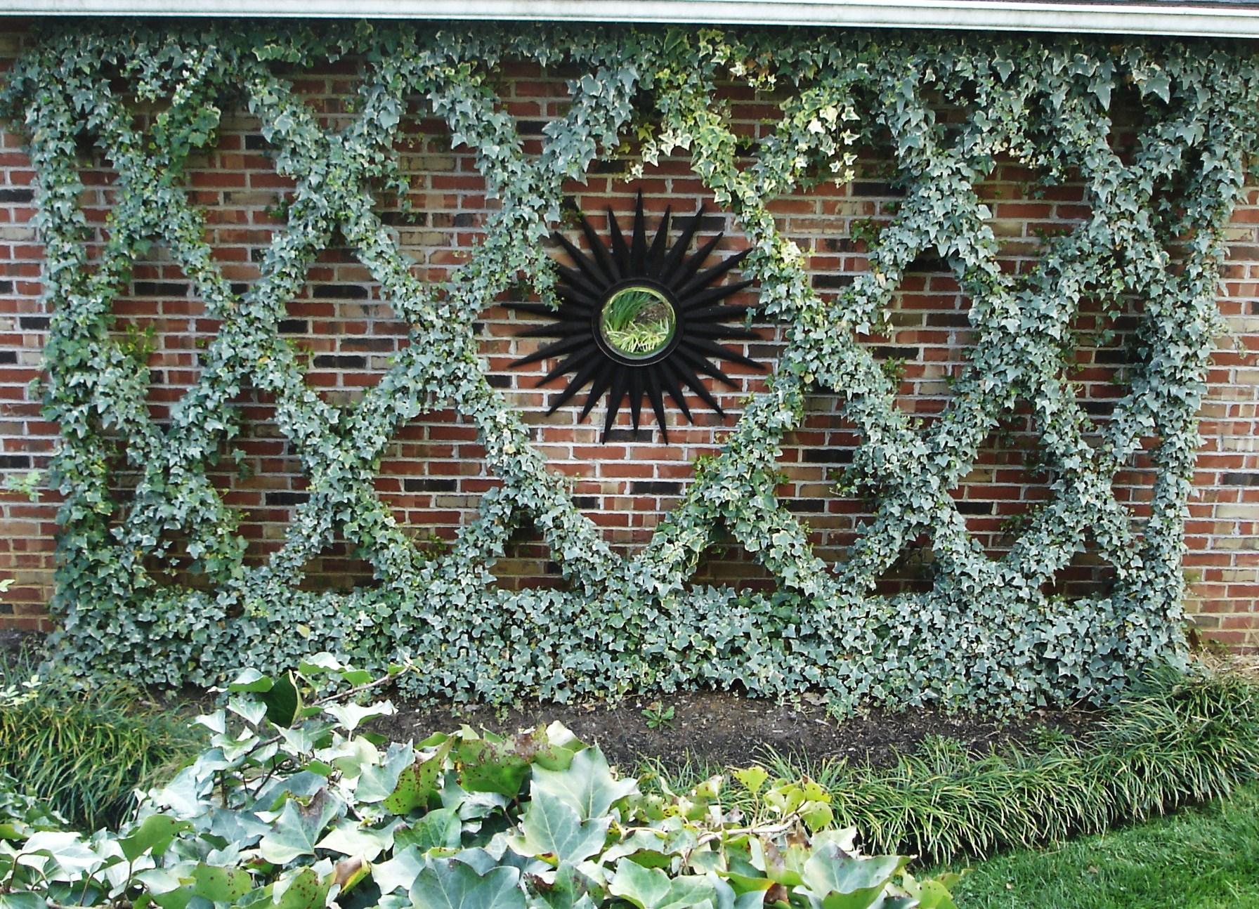 Garden Ivy Diamond Trellis lizbushong.com