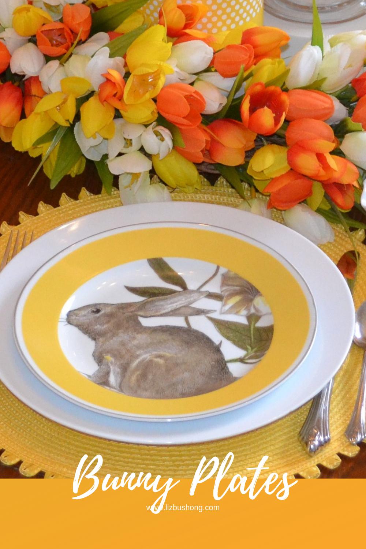 Bunny Plate place setting lizbushong.com