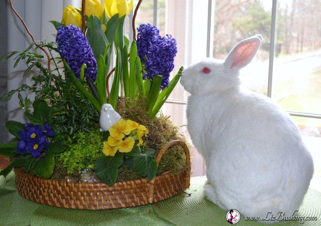 Spring arrangement- JJ leaf-www.lizbushong.com