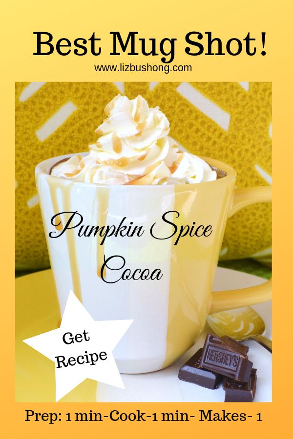 Best Mug Shot- Pumpkin Spice Mocha-lizbushong.com