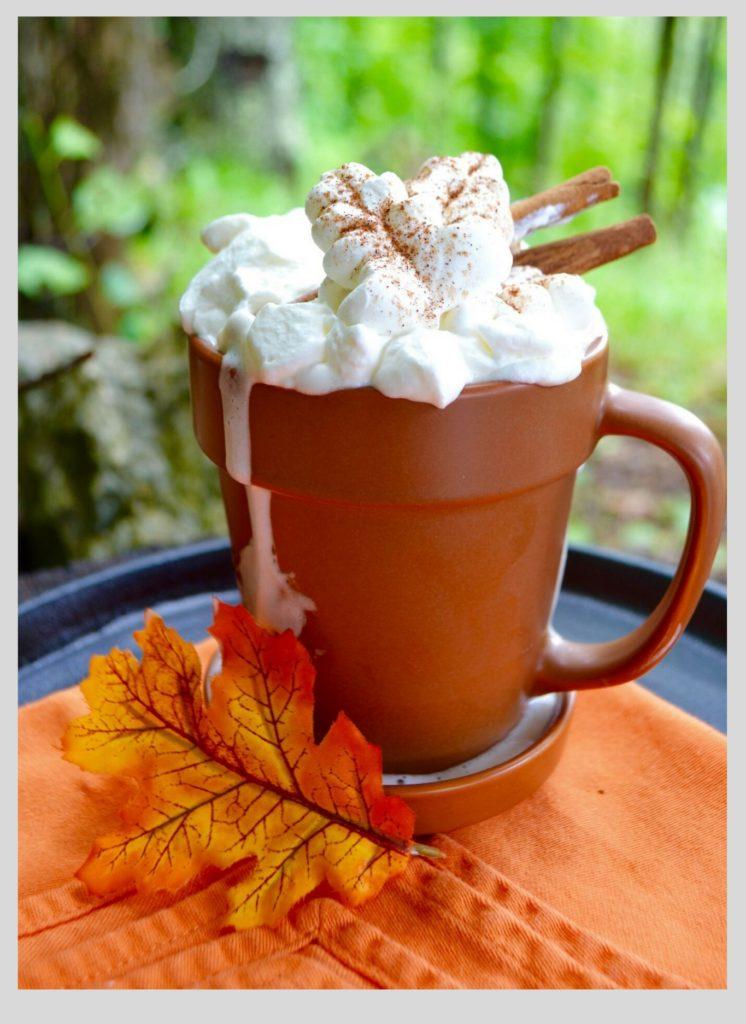 Fall Flavors-Cinnamon Latte