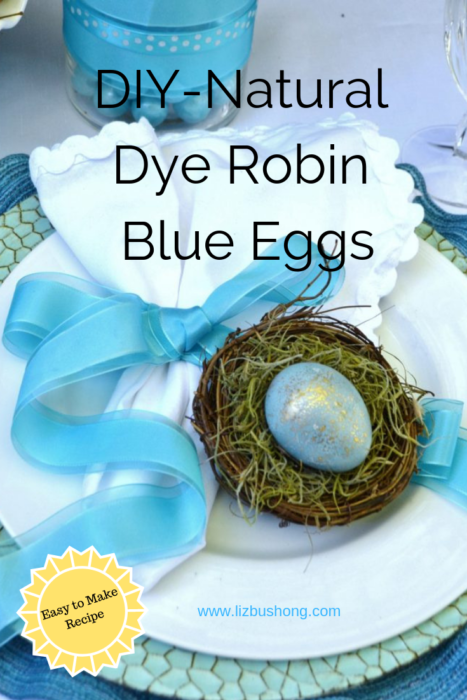 DIY Natural Dye Robin Blue Eggs lizbushong.com