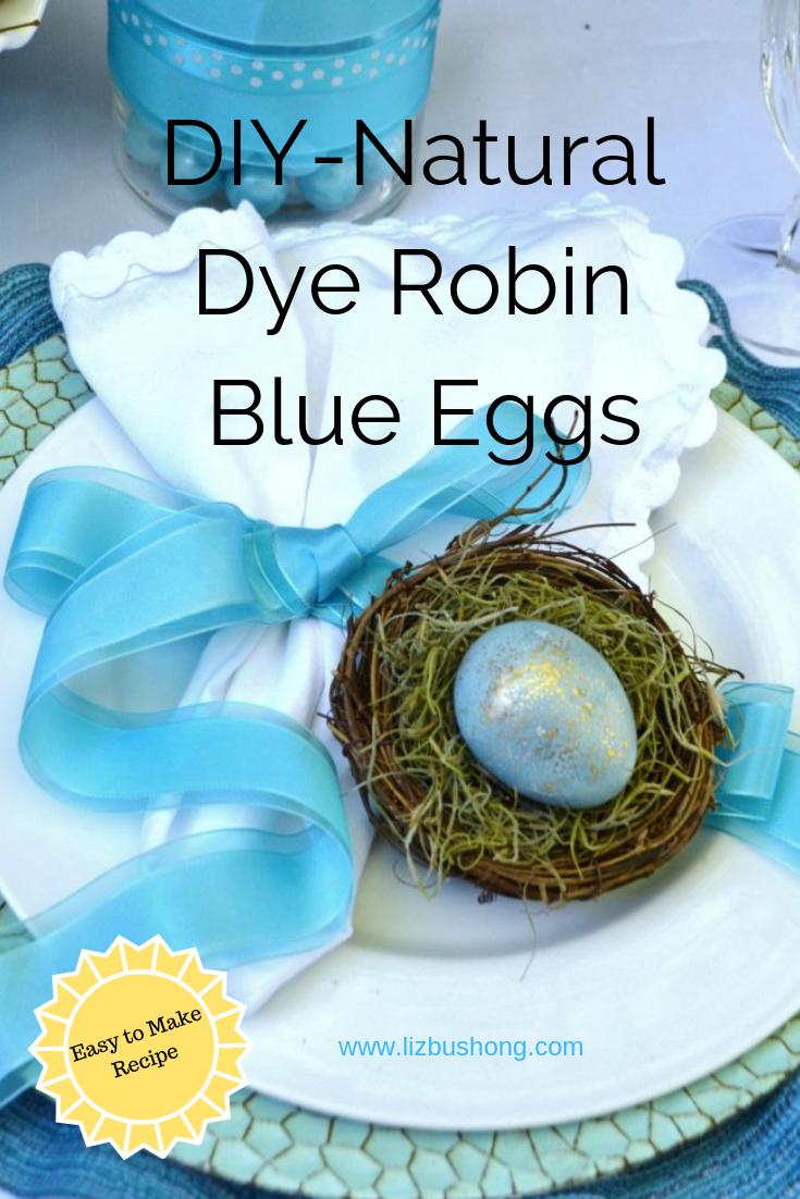 DIY Natural Dye Robin Blue Eggs lizbushong.com