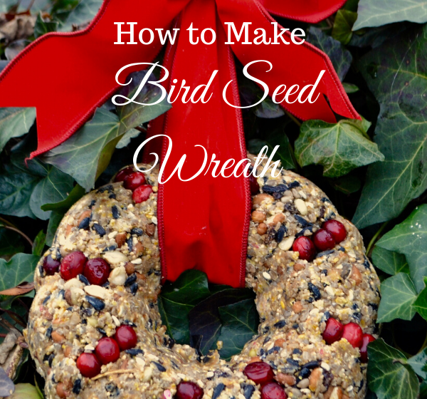 Dried Fruit and Berry Bird Seed Wreath DIY