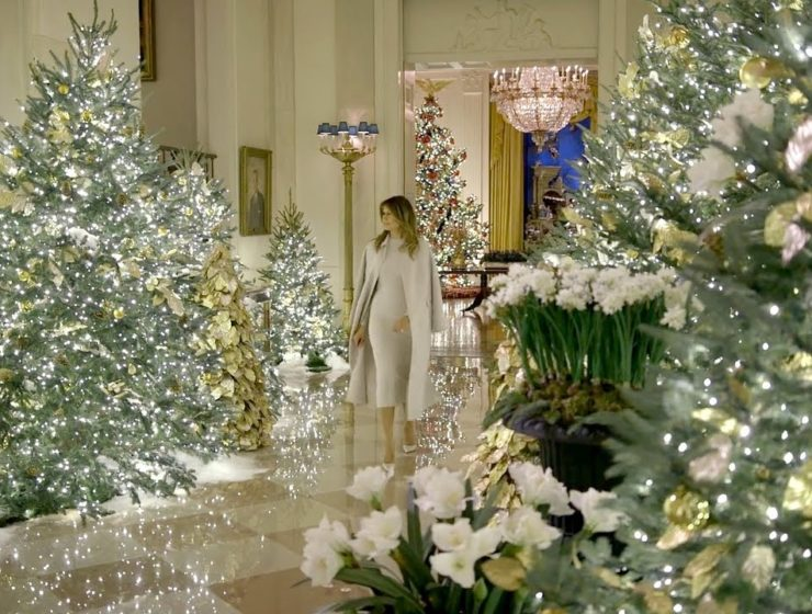 White House Christmas Decor- Paper Whites