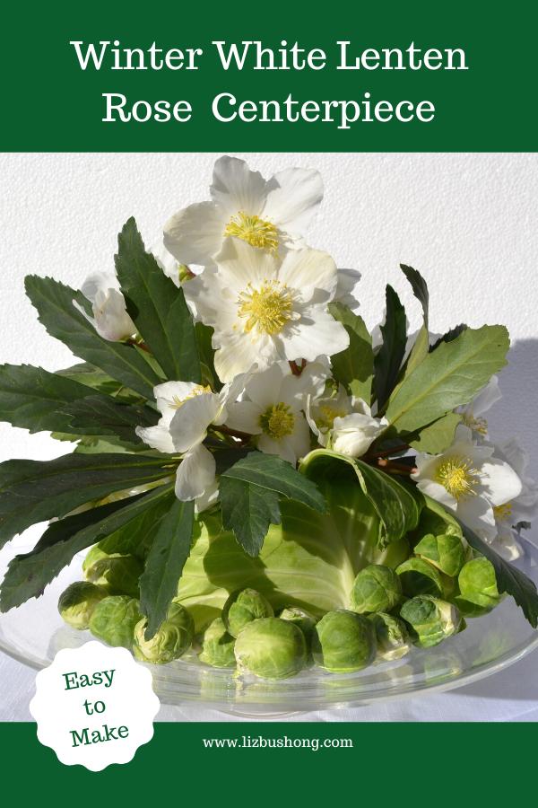 Winter Lenten Rose Centerpiece lizbushong.com