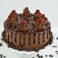Chocolate Raspberry Layer Cake lizbushong.com