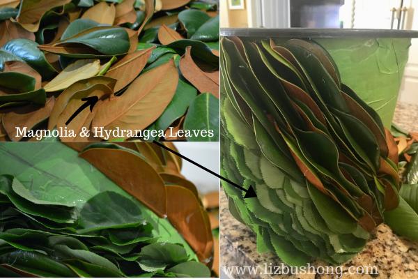 Magnolia Hydrangea leaves lizbushong.com