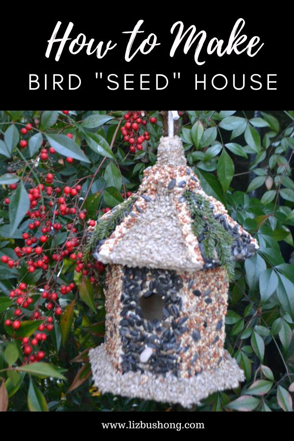 DIY Bird Seed House lizbushong.com