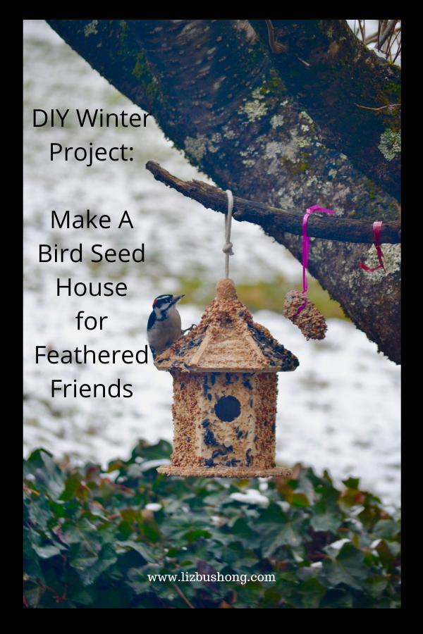 Bird house winter project lizbushong.com