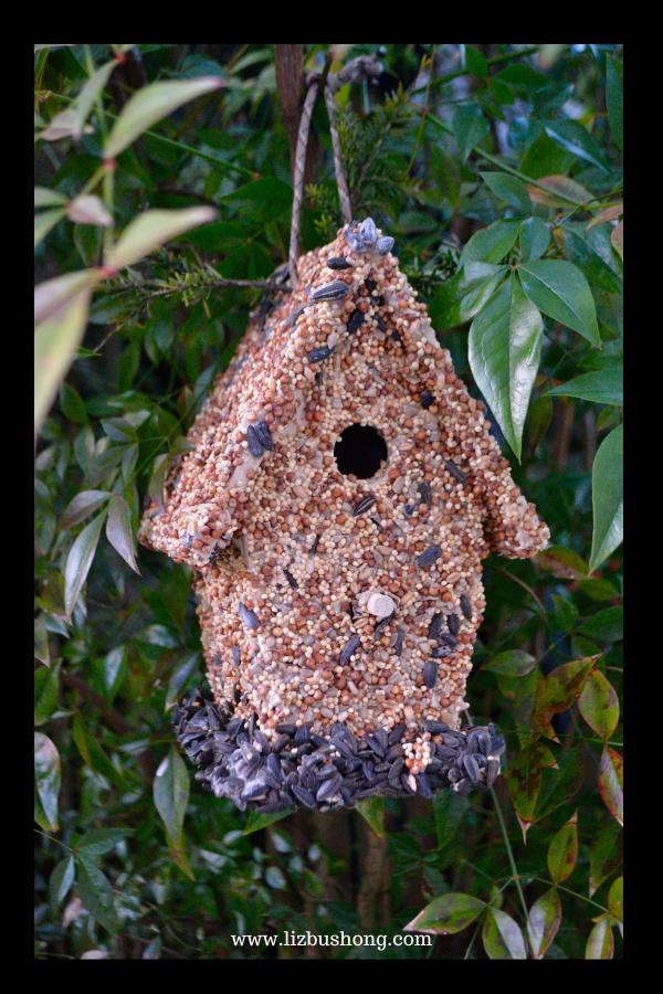 Bird House finished lizbushong.com