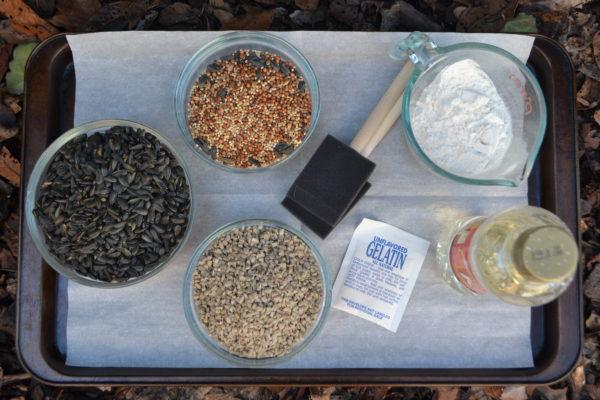 Ingredients for bird house glue lizbushong.com