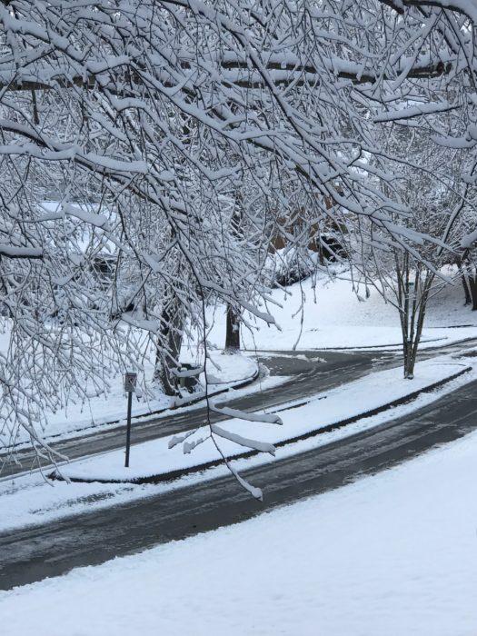 Snow Fall at lizbushong.com