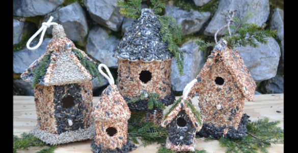 Bird Seed Houses, DIY lizbushong.com