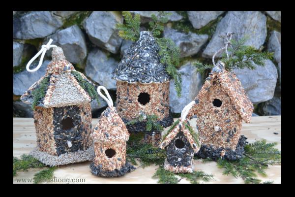 Bird Seed Houses, DIY lizbushong.com