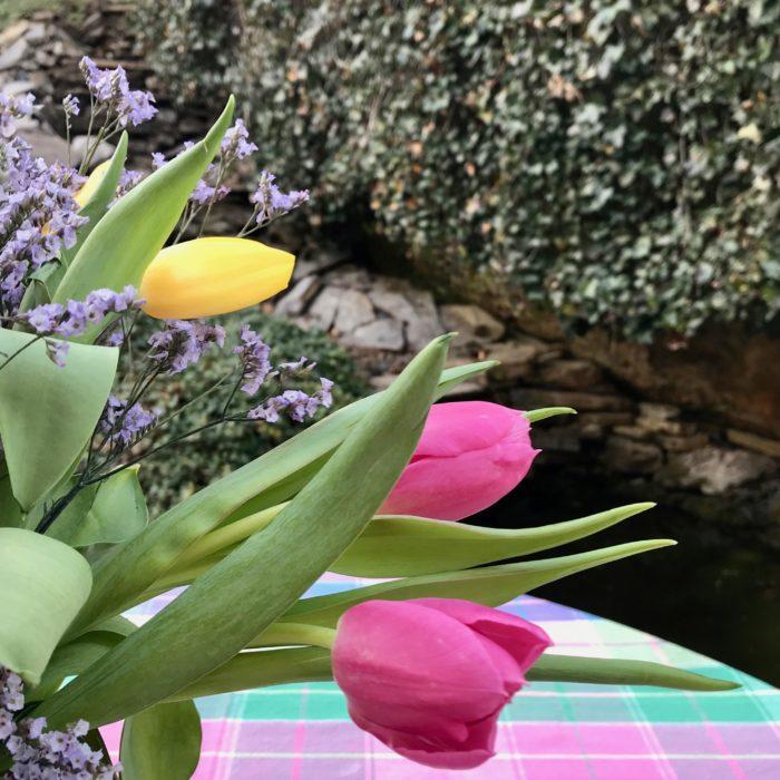 Tulips for cabbage vase lizbushong.com