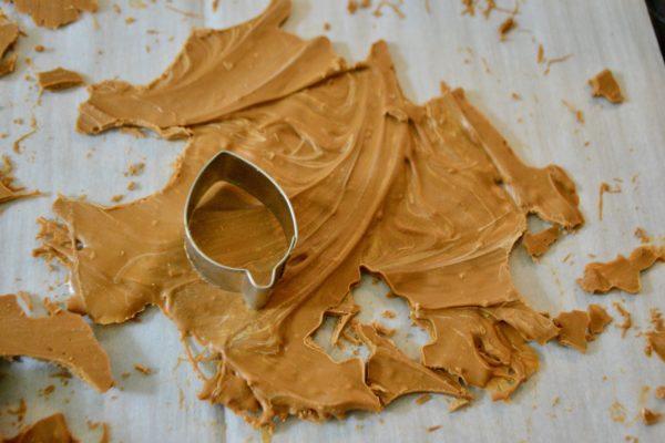 How to make salted caramel apple cider bombs leaves lizbushong.com